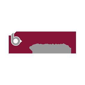 Logo blankenhorn direct search